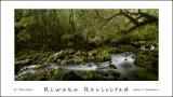Riwaka Revisited