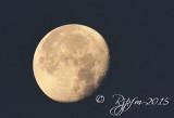 2569  Moon at Sunrise  Chincotegue  11-27-15.jpg