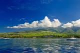 Shores of Lahaina 00203