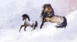 horsesnow2foal-s.jpg