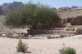 Jordan Petra 2013 2399 Nymphaeum.jpg