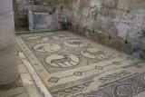 Jordan Petra 2013 2287b Byzantine Church mosaic.jpg