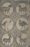 Jordan Petra 2013 2287c Byzantine Church mosaic.jpg