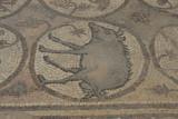 Jordan Petra 2013 2293 Byzantine Church mosaic.jpg