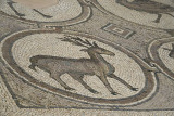 Jordan Petra 2013 2298b Byzantine Church mosaic.jpg