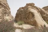 Jordan Petra 2013 2153 Wadi Muthlim.jpg