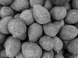 06_2014_Avocados Rocks 063 copy.jpg