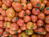 08_2014__Intense Tomatos 126.jpg