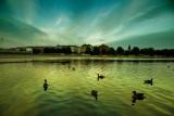The Lakes at night