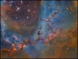 The leaping Puma in the Rosette nebula