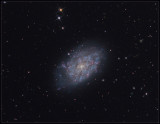 NGC 7793 in Sculptor - A closer look