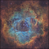Deep into the Rosette nebula