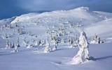Winter at Norefjell