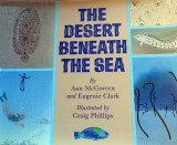 The Desert Beneath the Sea