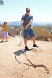 Red Diamond Rattlesnake at Santee Boulders (with map)