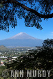 View of Popo
