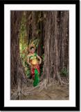 Under huge banyan trees