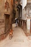 Street scene 03.jpg