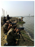 Bird Photography workshop-2