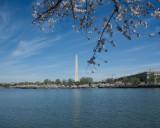 Washington Hike