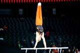 World Championships Artistic Gymnastics 2013 - Oct. 6th, Antwerp, Belgium.