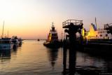 tugboat port jeff 7 30 14.jpg
