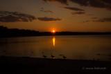 lake ronkonkoma