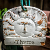 nothing but thyme