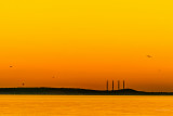 sunset long beach 9 26 14 2.jpg
