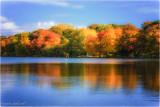 Mills Pond, Center Moriches, LI