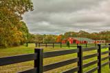 manorville red barn_.jpg