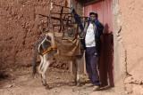 man and donkey (_MG_1553ok.jpg)