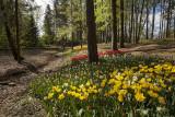 Arboretum Volčji potok (_MG_1546m.jpg