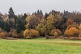 autumn - jesen (_MG_9539m.jpg)