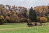 autumn - jesen (_MG_9540m.jpg)
