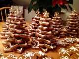 Xmasy gingerbread forest ;-)