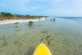 sup-snorkeling