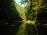 Cohutta Wilderness, GA
