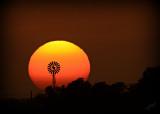 Sunset on Texas Prairie
