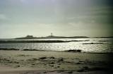 Año Nuevo Island