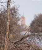 Leland Tower