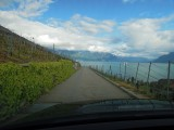 Montreaux vineyards