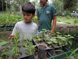 Buying plants at the Dehradun Forest Institute