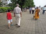 Passing Bombay monkey