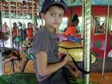 Bronx Zoo bug carosel