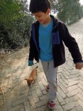 Sunderbans puppy