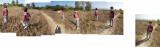 Rahil in nearby Dehradun field (30 Nov 2014)