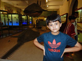 At the Prince of Wales Museum in Bombay