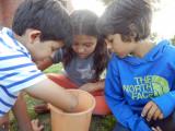 Mice Inspectors Rahil, Sophie, Imran