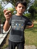 Found a cucumber!